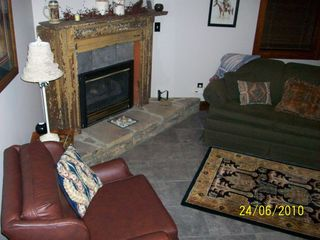 Black Mountain cabin photo - Den with Queen Sleeper Sofa - Computer and Media Room