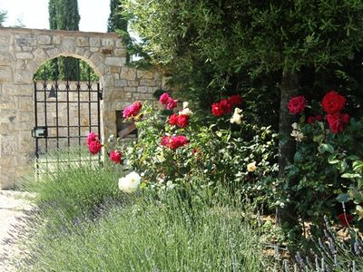 Fully landscaped yard with roses