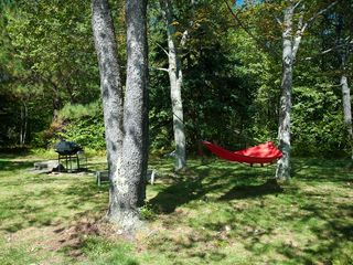 Claryville cabin photo - Backyard