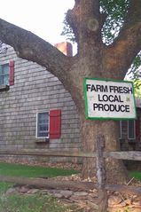 East Hampton house photo - Local farmstands nearby