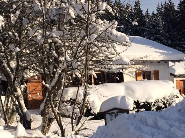 Detached cottage in an unspoilt south-facing slope at 1000m, forest edge