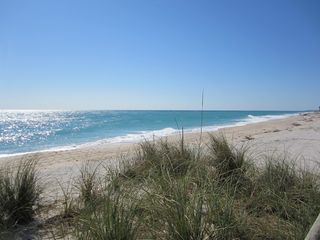 Vero Beach studio photo - the most beautiful beach in vero just a walk down the lane