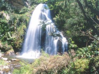 Reggio Calabria City villa photo - Falls in Aspromonte