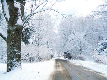 Woodstock house rental - snowy road by house