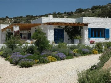 Paros house rental - The Olive House
