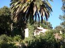 APPARTEMENT - Rayol Canadel sur Mer - 1 chambre - 4 personnes