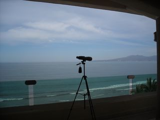 Nuevo Vallarta condo photo - Watching whales breach from the terrace