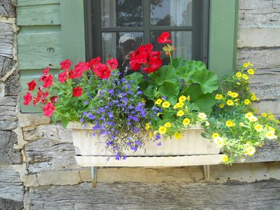 Flower box at Clear Creek Cabin