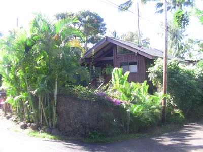 Street View of House Volcanic Rock Wall and Tropical Fora on Perimeter
