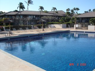 Kaanapali condo photo - 1 of 3 Pools on Property; Unit is Behind 3rd Palm Counting Left to Right
