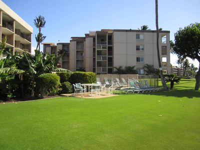 pool and lawn area