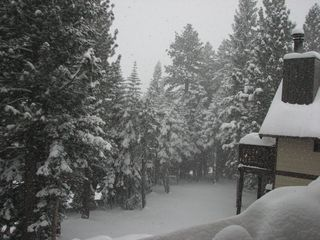 Mammoth Lakes condo photo - Tons of room for the kids to sled and throw snowballs