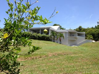 Vieques Island villa photo - from lower yard