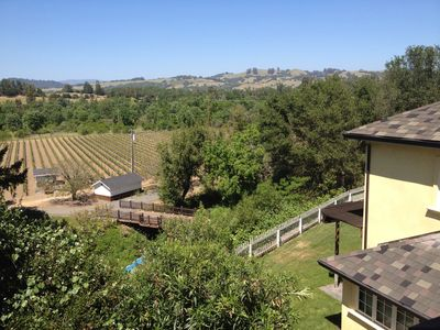 View of vineyards and main house from the balcony of guest house.