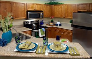 Lake Buena Vista apartment photo - Fully Equipped Kitchen at Blue Tree Resort