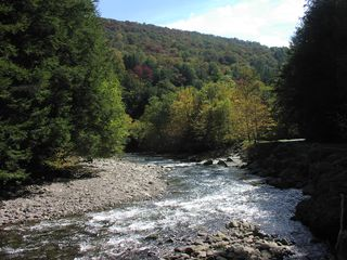 Neversink River for Swimming - Claryville cabin vacation rental photo