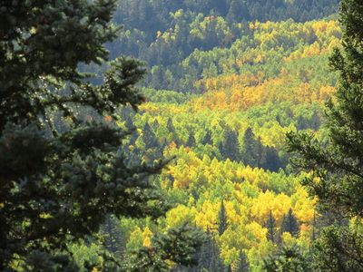 Fall colors in upper Red River Valley