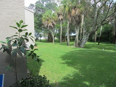 Groomed backyard containing many mature trees with view of Sarasota Bay