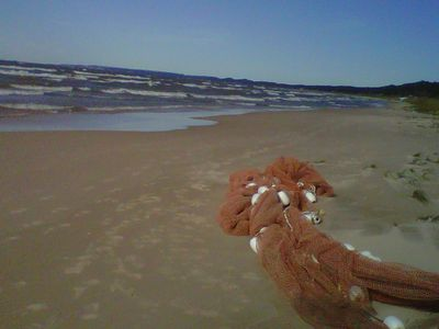 Fishermans net washed up on private beach looking northward toward Pentwater
