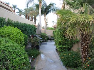 Palm Desert condo photo - Lush plants and flowers