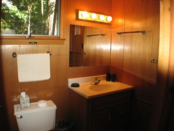 Full bath in lower level services queen bedroom with private entry at ground lvl