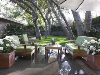 Malibu house photo - Enjoy the majesty of the umbrella of large sycamore trees while you relax.