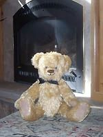 VRBO Bear warming by the fire!