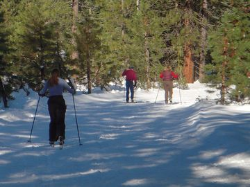 Cross Country skiing near McCloud