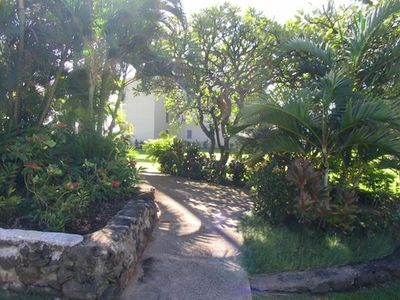 Take a Stroll Through the Tropical Gardens