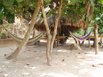 PALAPA LUNCH, SNOOZE IN THE HAMMOCKS