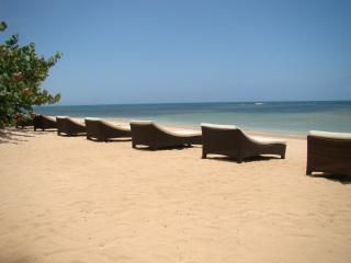 Las Terrenas apartment photo - private beach