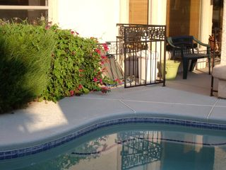 Las Vegas house photo - pool with child safe fencing