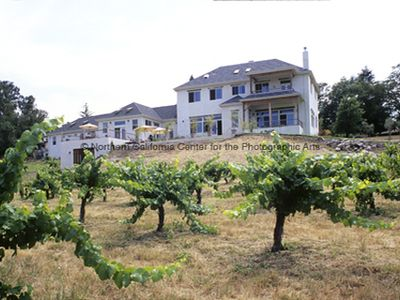 View from mid vineyard looking up to house from backyard