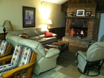 Selma cabin rental - Lots of seating in front of the fireplace, sofabed for extra folks