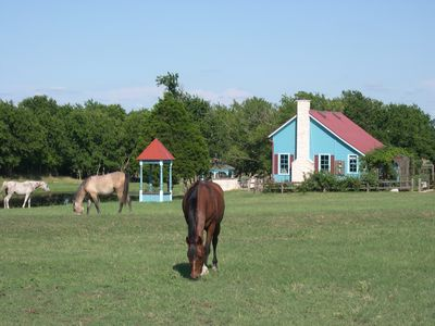 Horses grazing near Lake House.