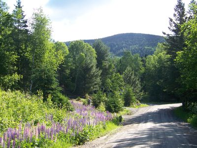 The road to our house. Surrounded by lupines in June!