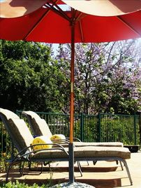 Ojai studio rental - Take in the views while sipping on a cold beverage by the pool!