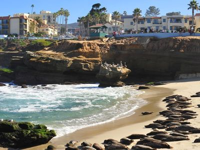 La Jolla Cove & Seal Beach