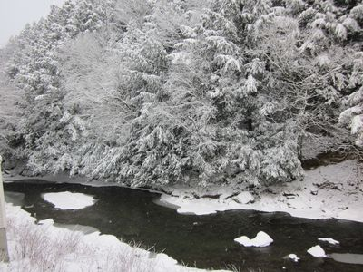 Little River in December