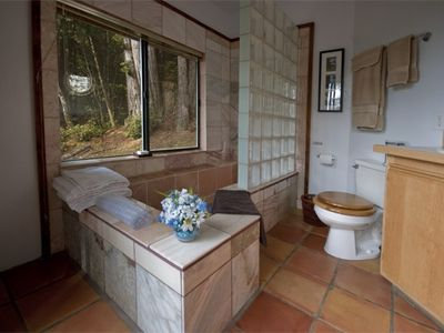 Bathroom with Forest View