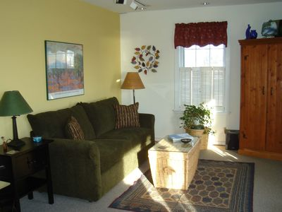 Sunny, open living has view to harbor, gas fireplace, sleeper sofa