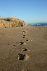 Matunuck house photo - Footprints in the sand...