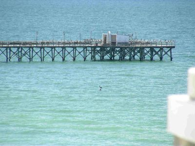 Walk The Beach To Redington Shores Fishing Pier