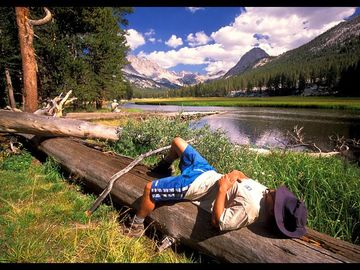 Sequoia Park studio rental - Pick a spot in Sequoia Park (pictured) or by the river to take a nap and relax.