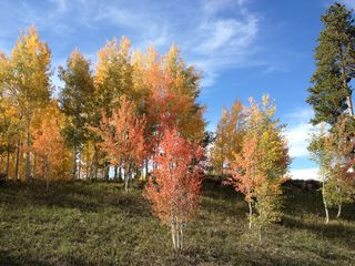Silverthorne townhome photo - Fall in Summit County