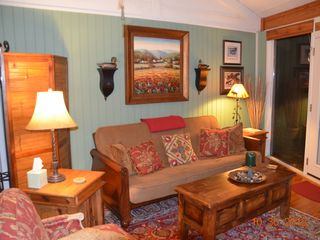 Big Canoe chalet photo - Great Room. Fold out Futon Sofa. Sleeps 2