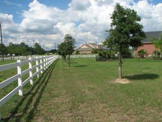 Plenty of space to run or plan an event here! - Houston house vacation rental photo