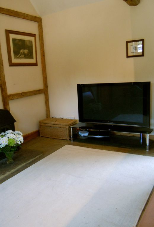 TV Lounge area with large flat screen TV