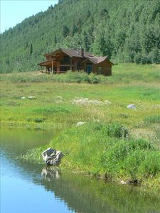 Mountain home in a beautiful meadow at 8800 feet.