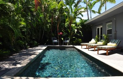 Lush & private backyard retreat, heated salt water pool, warm outdoor shower